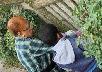 Intergenerational Gardening